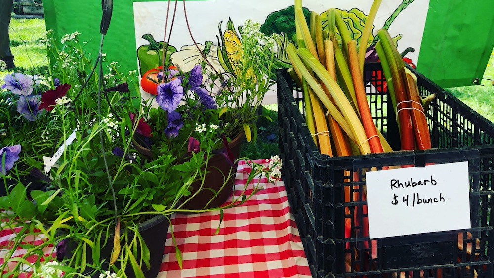 August 2019 Member of the Month: Ridgway Farmers Market