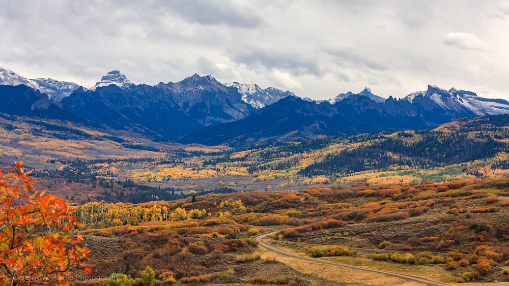 Fall for Foliage in Ridgway