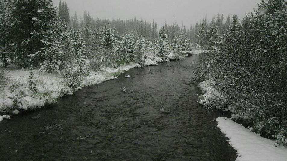 Ridgway Fall And Winter Fishing